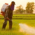 prodotti-fitosanitari-funghicidi