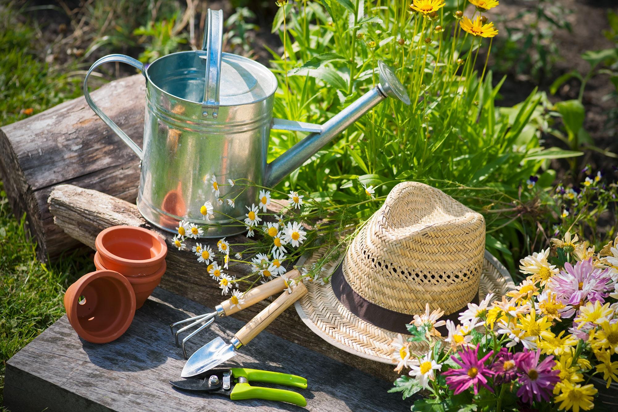 gaion agricoltura vendita di prodotti per l 39 agricoltura e il giardinaggio. Black Bedroom Furniture Sets. Home Design Ideas