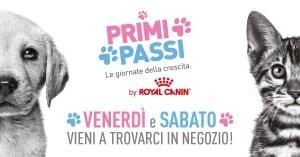 PRIMI PASSI FACEBOOK COVER PHOTO